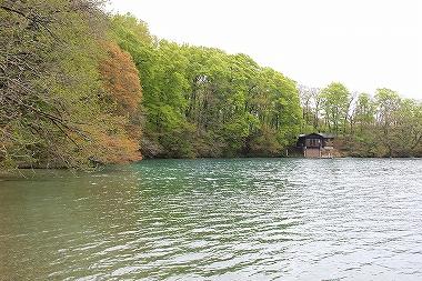 十和田湖西湖畔の湖面
