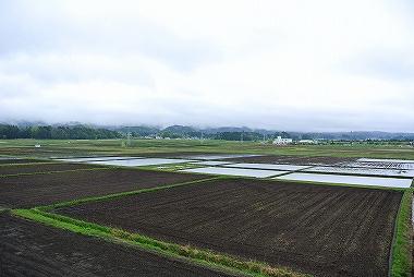 鹿角の農作業