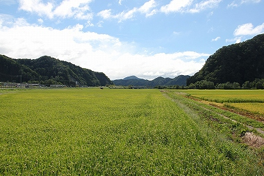 鹿角の風景