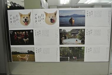 ○○と秋田犬と