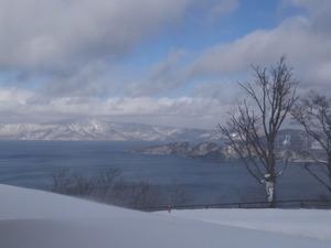 冬の十和田湖-野鳥