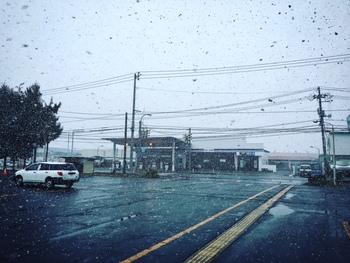 本日の鹿角は・・・雪!!