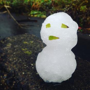 雪へと変わりました!