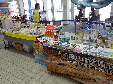 津軽海峡フェリー函館ターミナルに行ってきました!