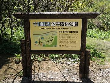 十和田湖の新情報!
