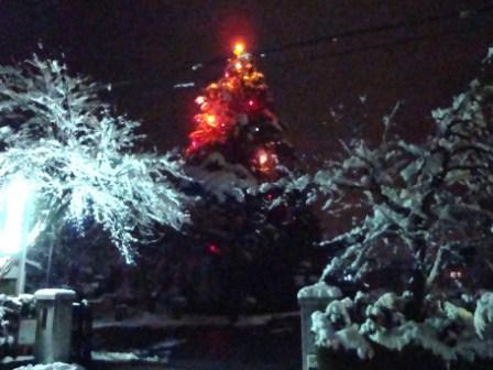 でっけー(大きい)クリスマスツリー