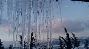 「大寒」間近の朝