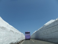 『秋田八幡平 雪の回廊と温泉を楽しむ』