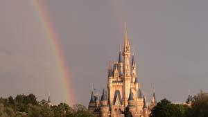 きれいな虹ですね~