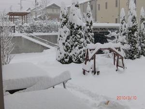 今年一番の大雪in 3月