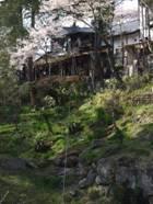 セレンゲティでゴールデンウィーク岩手方面への旅行