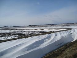 雪が作った模様