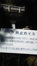 熱海(2)