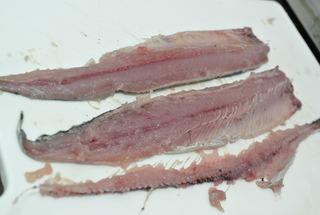 女川初水揚げの秋刀魚をいただきました!