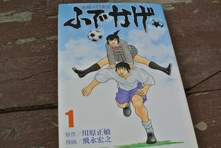 世界初!ヒラードの「サッカー漫画診断」 in パンジーまつり