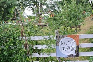 福島あんざい果樹園にツリーハウス!