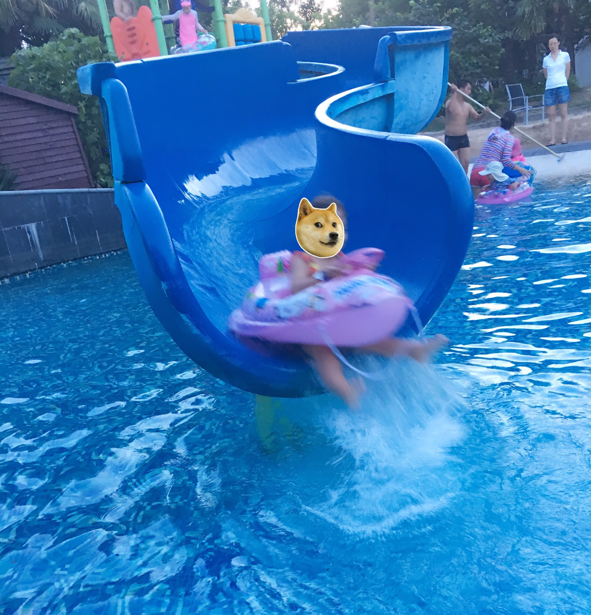 上海の夏は家族でプール   ソフィテル上海余山オリエンタル(上海东方佘山索菲特酒店)
