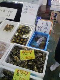 男鹿の海鮮市場