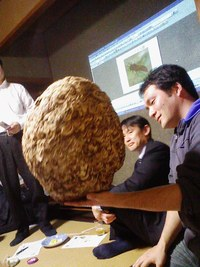 「せんだい3年Bee組」発足!?