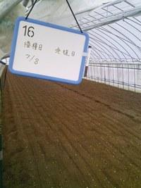 しんさんと行く、涌谷・氏家農場