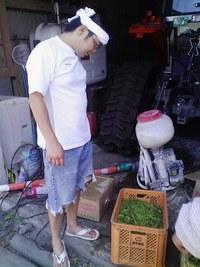 小瀬菜大根の種まきをしてきました。