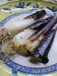 河北町の希少な伝統野菜「皿貝ねぎ」