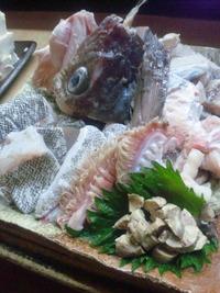 カンダーラ(寒鱈)の会2012