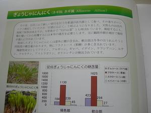 庄内の農産物のチカラ