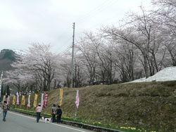 小玉川熊まつり(小国町)