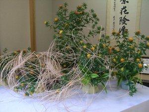 白鷹紅花まつり今年も