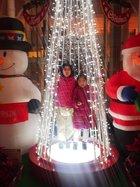 今年の霞城セントラルのツリーは・・