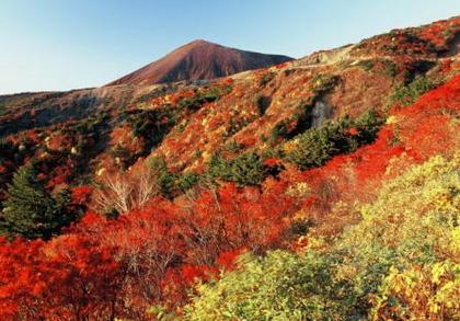 秋を先取り☆福島の名所といえば・・・