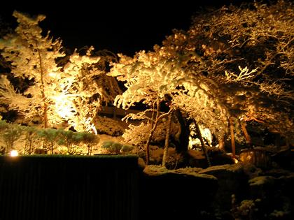 雪の庭園もロマンチック☆