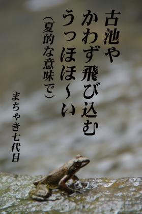 古池や、蛙飛び込む・・・