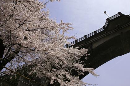 穴原温泉の美しい春をたずねて~①~