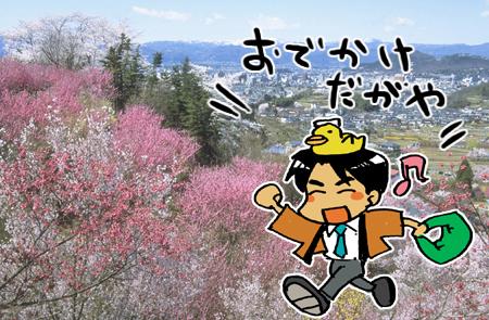 花見山にランチバイキングはいかが?