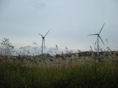風を見方に…♪10月23日。