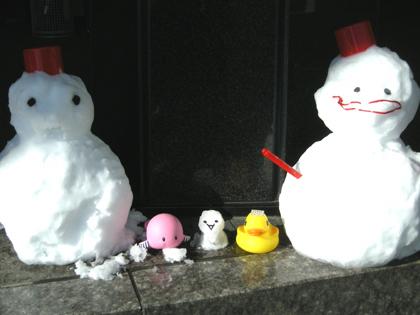 冬の妖精が舞い降りました。