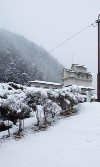 今日の雪景色☆