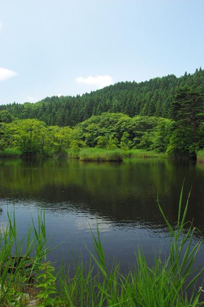緑の美しい風景in土湯峠【2】