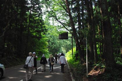 美しい緑の景色♪in土湯峠【1】