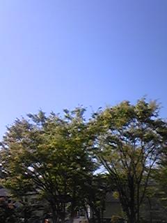 良い天気☆